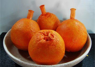Realistic Balloon Oranges