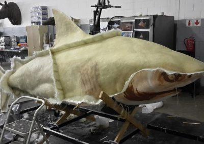 Bull Shark Mould