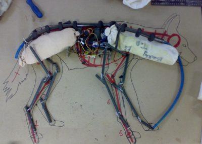 Wild Dog Inner Mechanics
